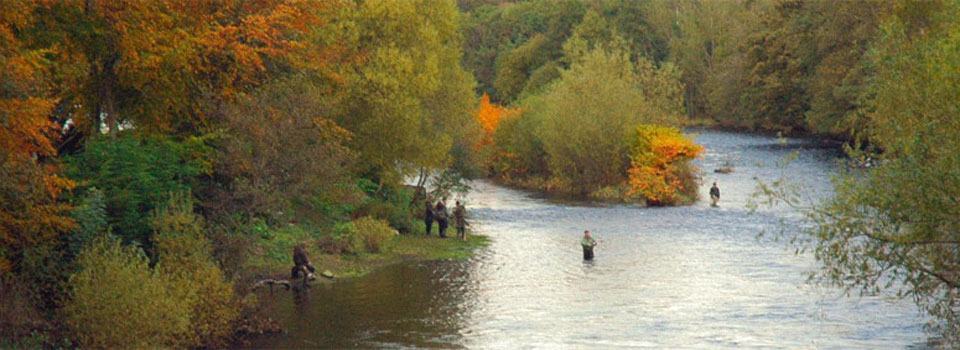 Fishing in Crieff